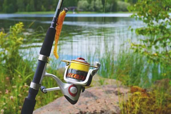 Top 10 Best Spinning Reels For Bass 2020 - Updated Guide