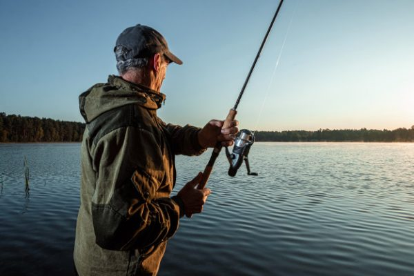 Top 10 Best Spinning Reels for Saltwater You Need To Consider