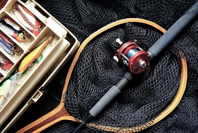 The Top 10 Best Fishing Reels for Bass in 2020