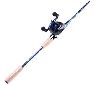 fishing rods for bass