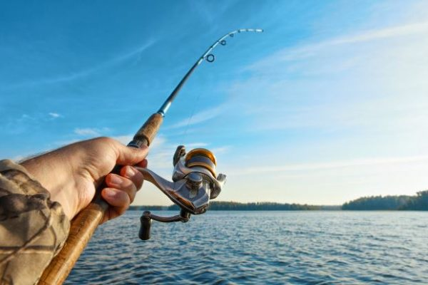 The Top 10 Best Fishing Rods for Bass in 2020
