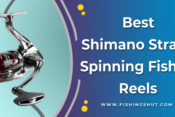 Shimano Stradic Ci4+ 4000 XG FB Spinning Fishing Reel With Front Drag